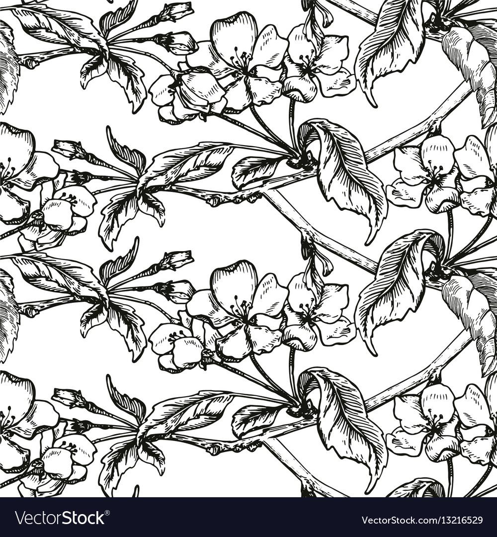 apple tree sketch design royalty free vector image Apple Bushel apple tree sketch design vector image