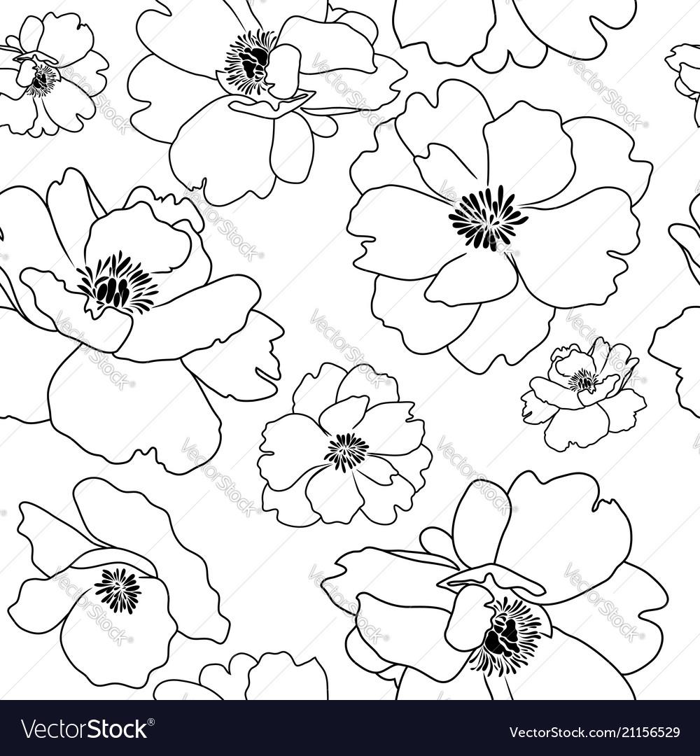 Poppy flower outline seamless background