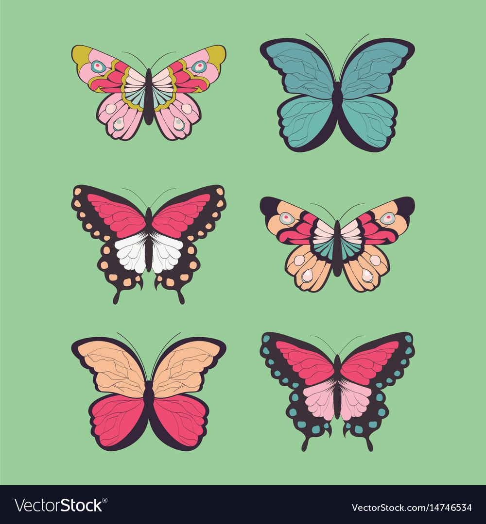 Collection six hand drawn colorful butterflies