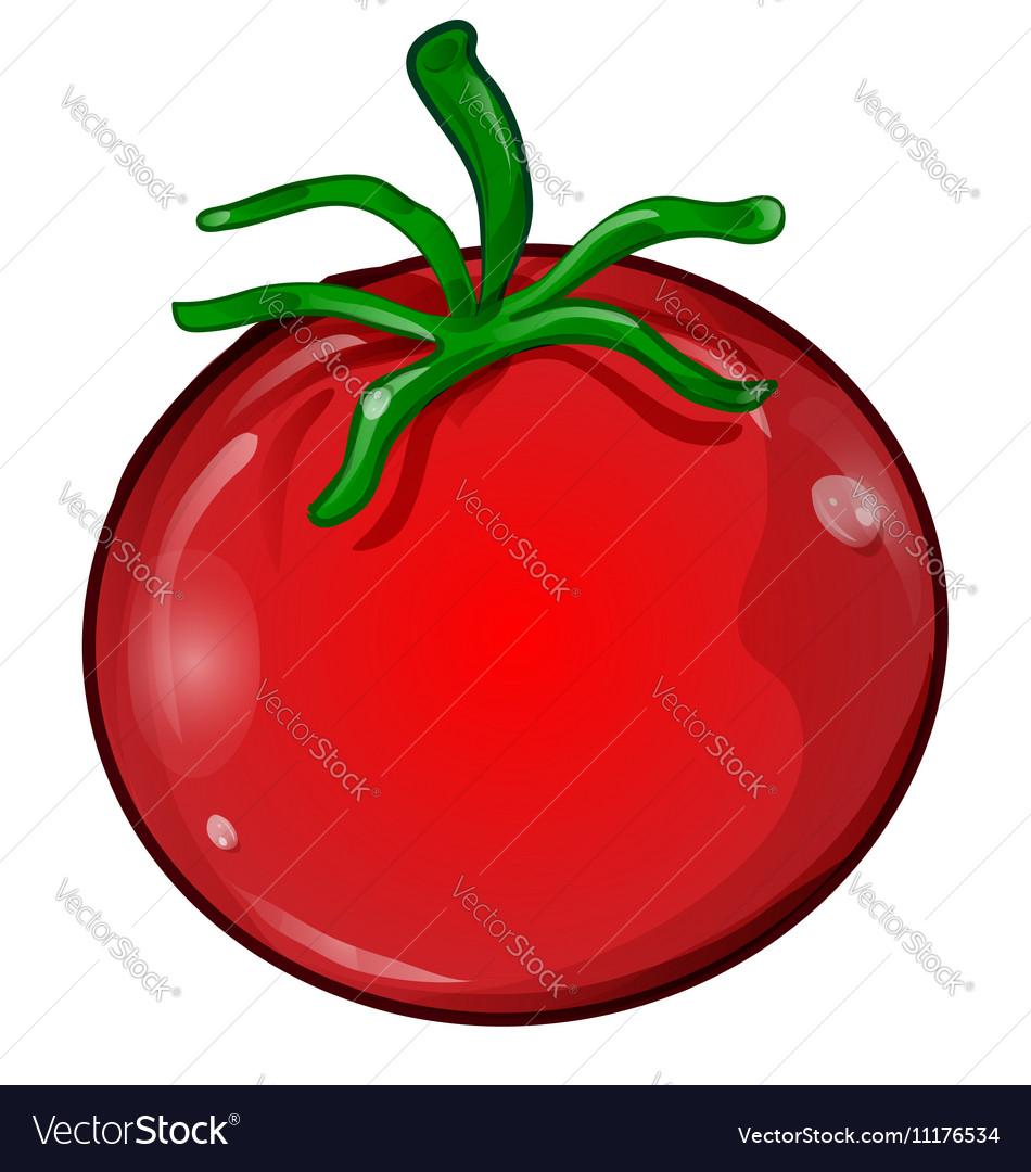 tomato cartoon isolated royalty free vector image rh vectorstock com cartoon tomato plant cartoon tomato in sunglasses