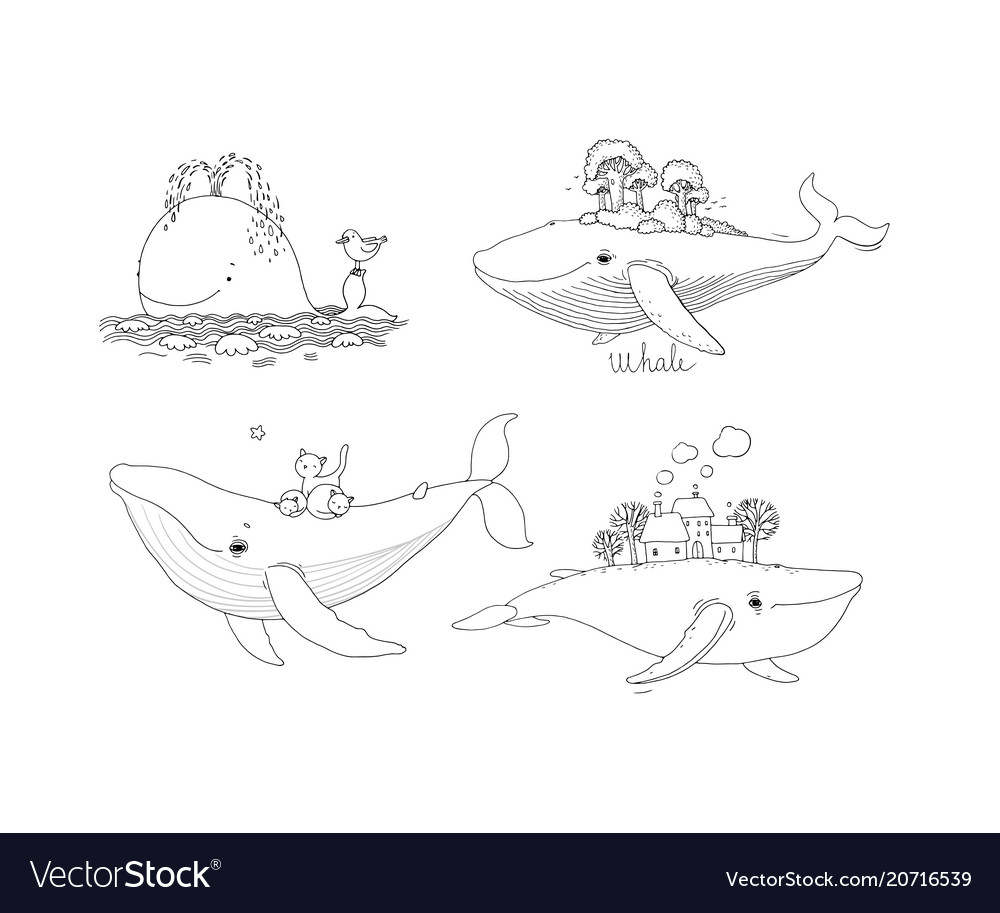 A large set with whales vector image