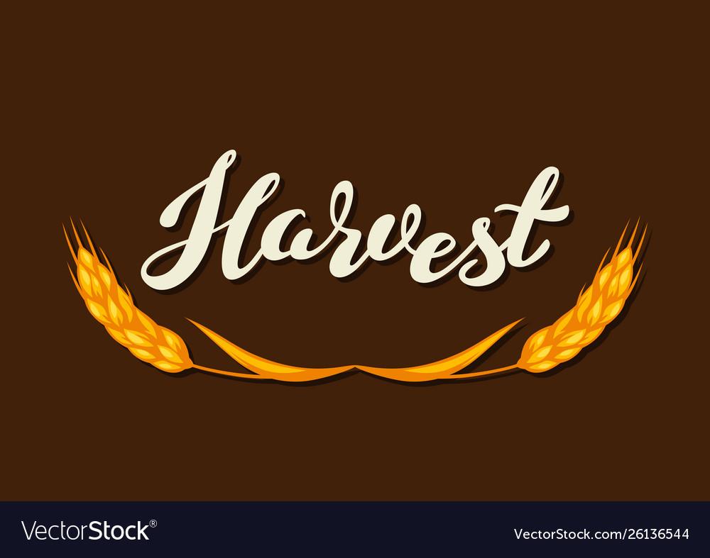 Harvest typography letteringemblem autumn
