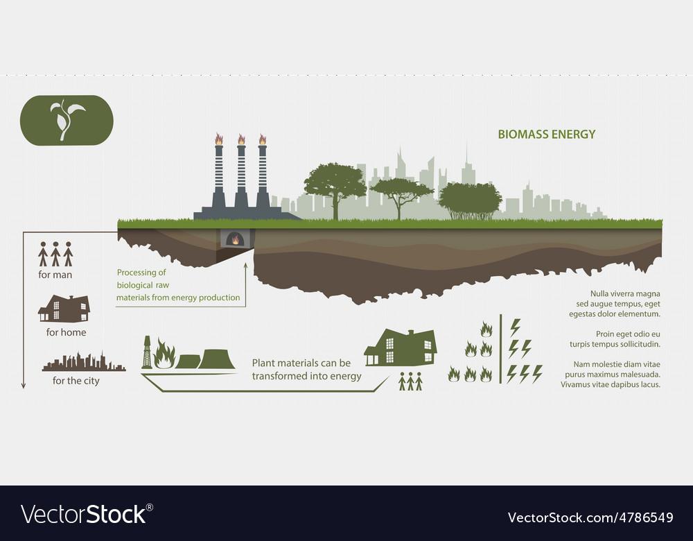 Renewable energy from biomass energy