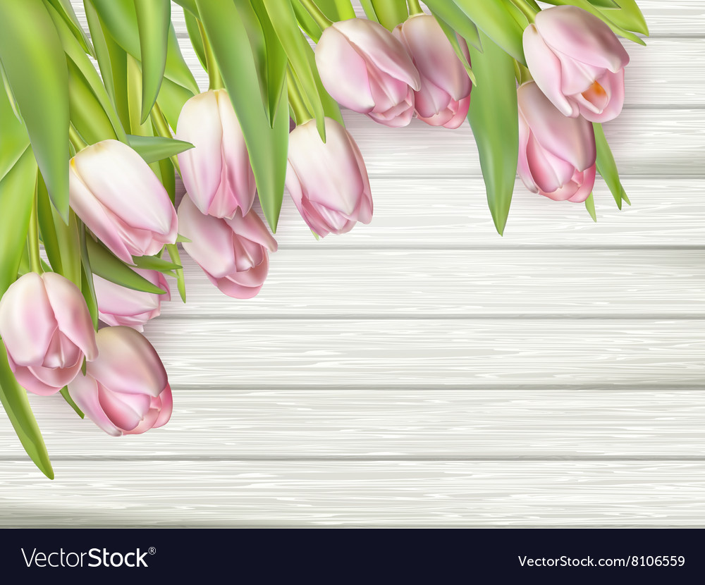Color tulips on wooden background EPS 10