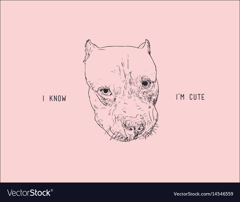 Face dog portait cute dog hand drawn sketch vector image