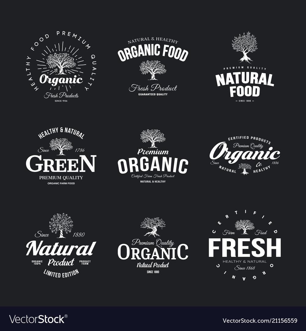 Olive tree vintage old logo badge isolated on dark