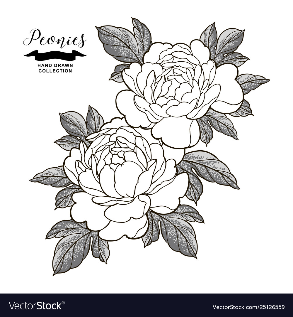 Peony flowers and leaves in japanese tattoo style