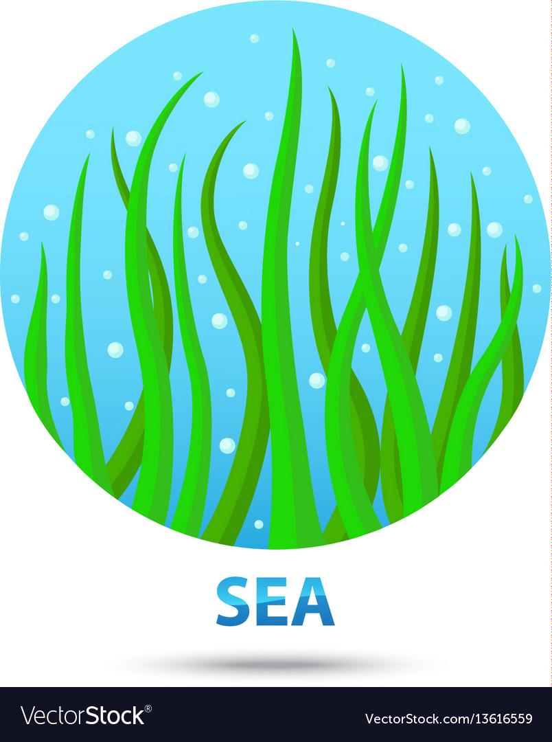 Sea nature icon