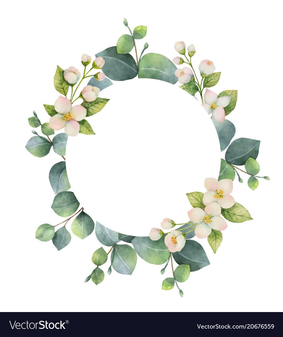 Watercolor wreath with green eucalyptus vector image