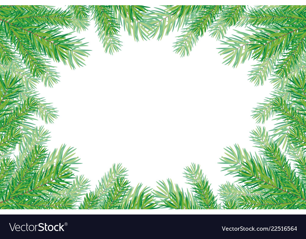Background with christmas trees branches