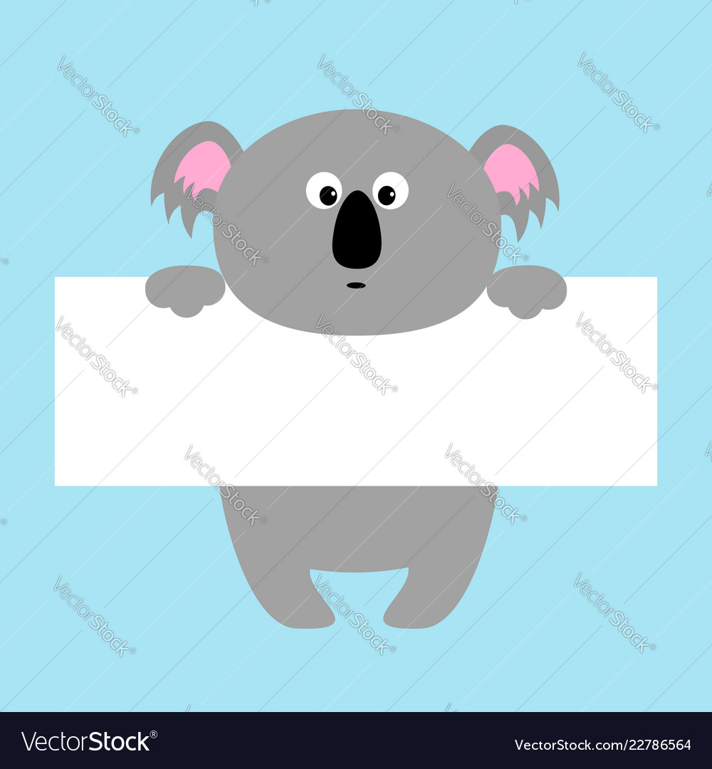funny koala hanging on paper board template vector image