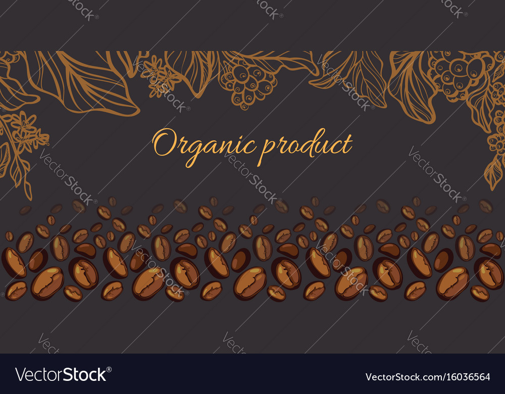 Template coffee vector image