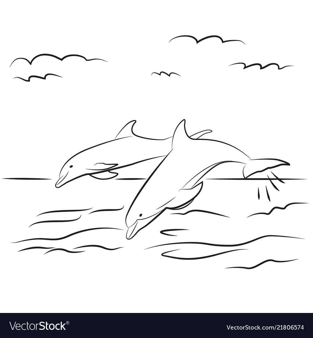 Dolphins drawn contour black coloring