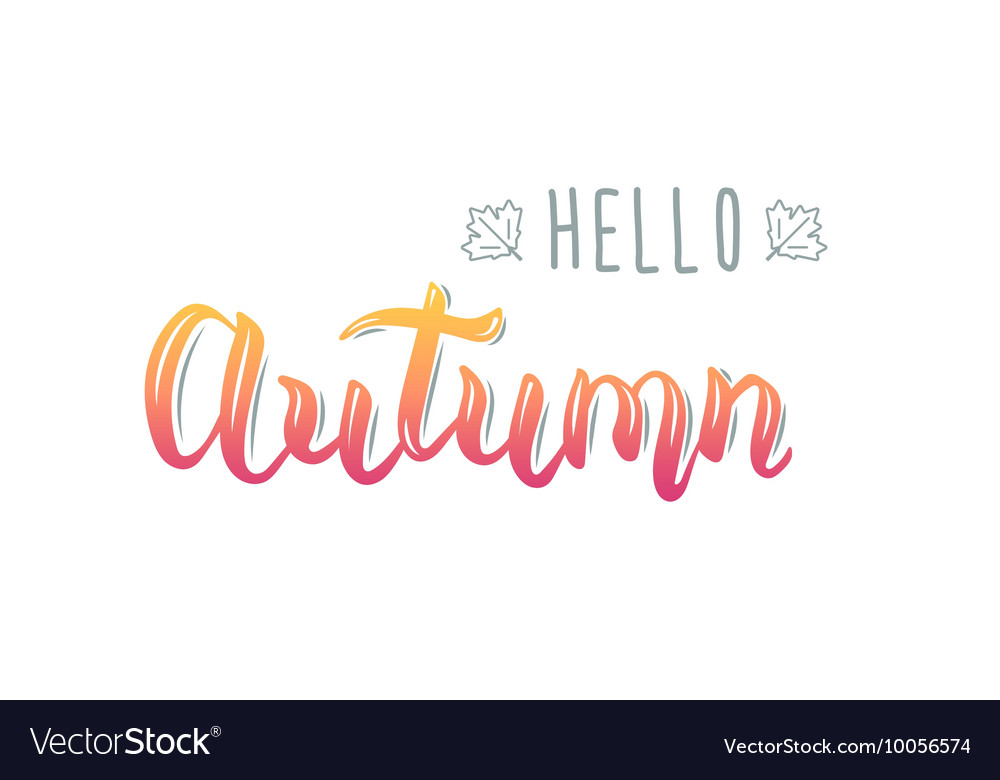 Hello Autumn Trendy handwriting quote fashion vector image
