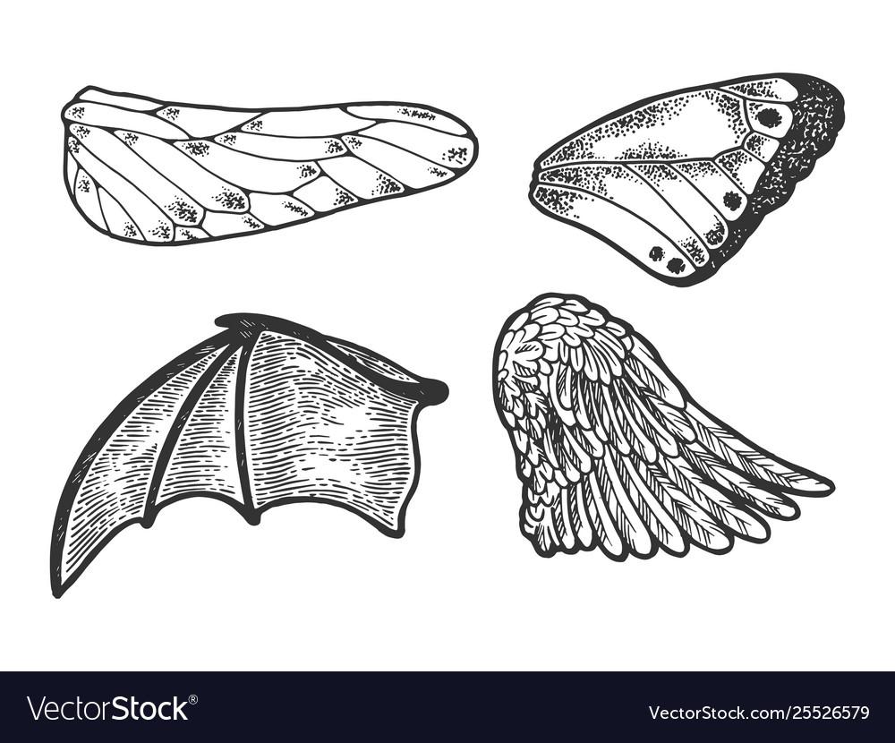 Bird angel wings set sketch engraving