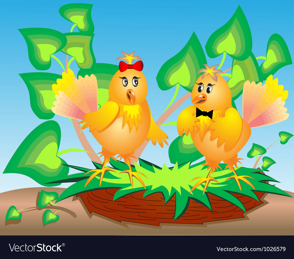 Cartoon Birds Nest vector image