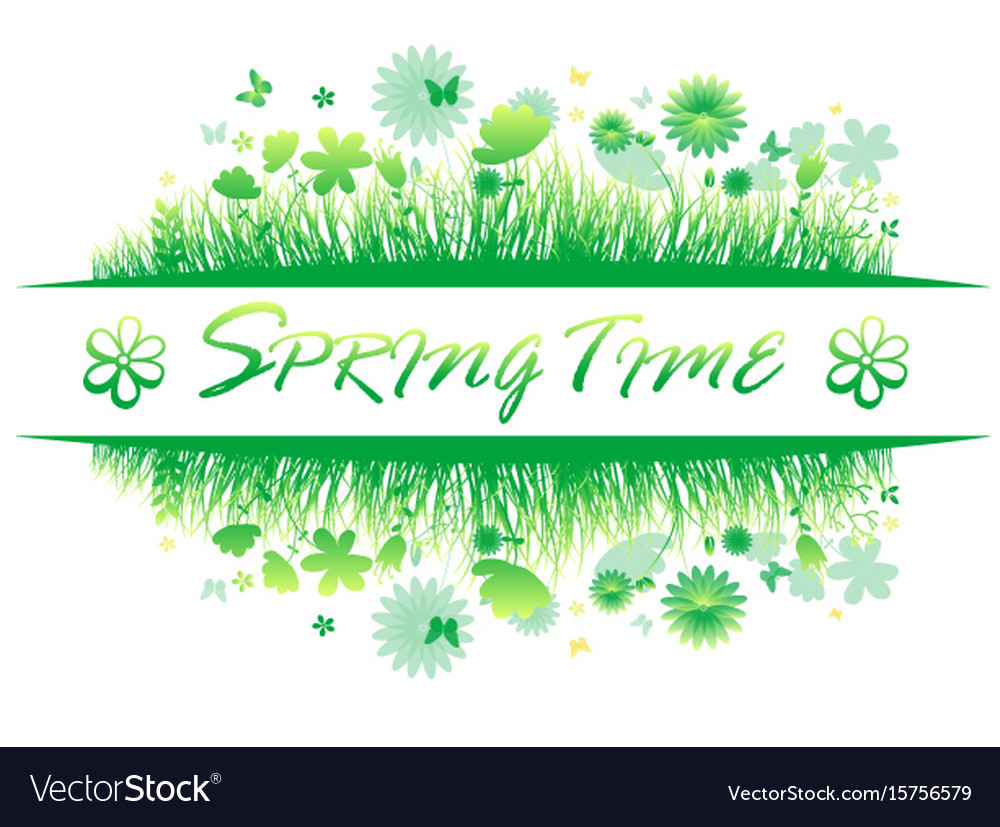Green spring grass with flower and butterflies