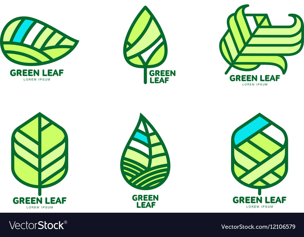 Set of green leaf logo templates