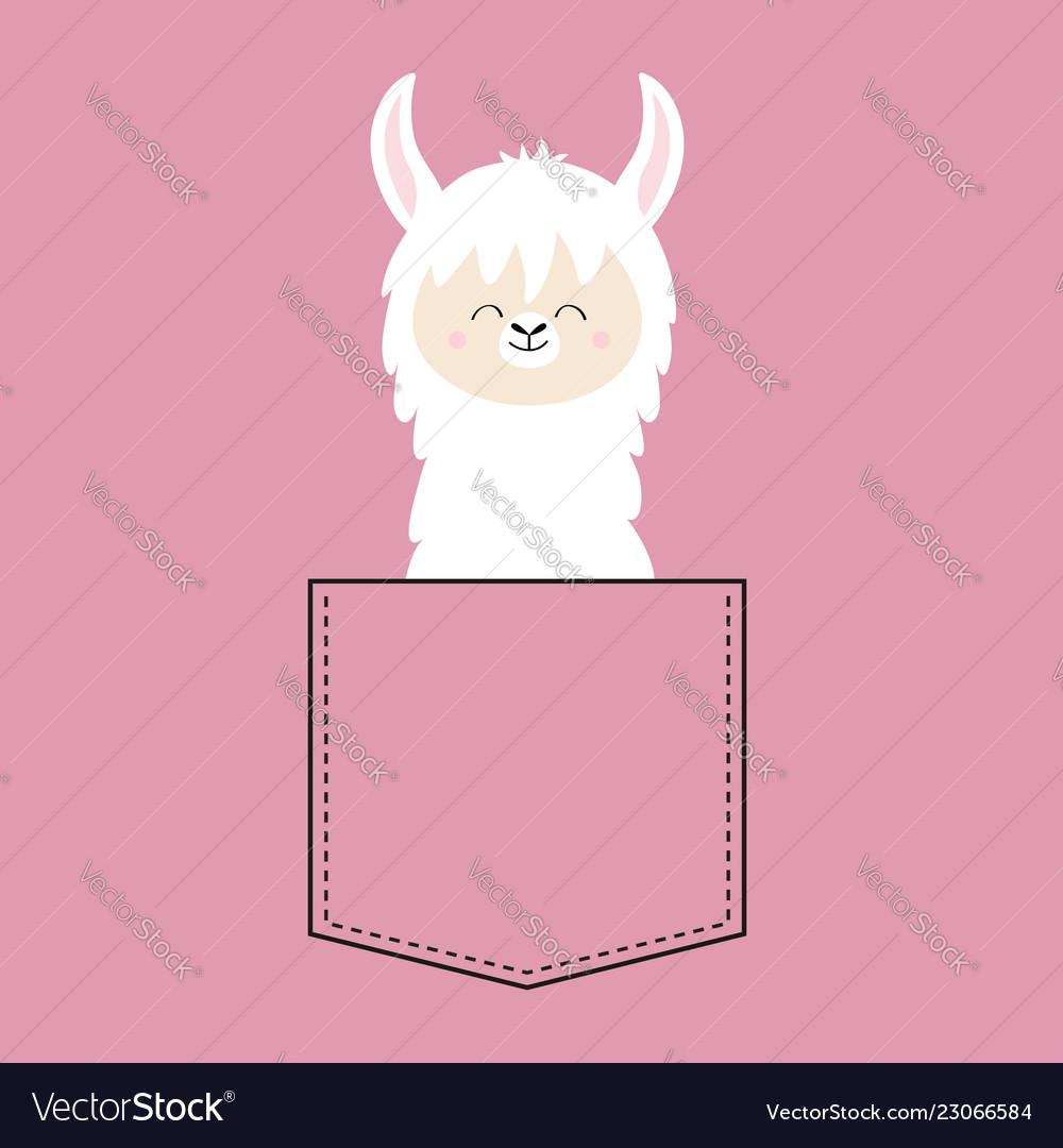 Alpaca Llama Face Neck In The Pocket T Shirt Vector Image