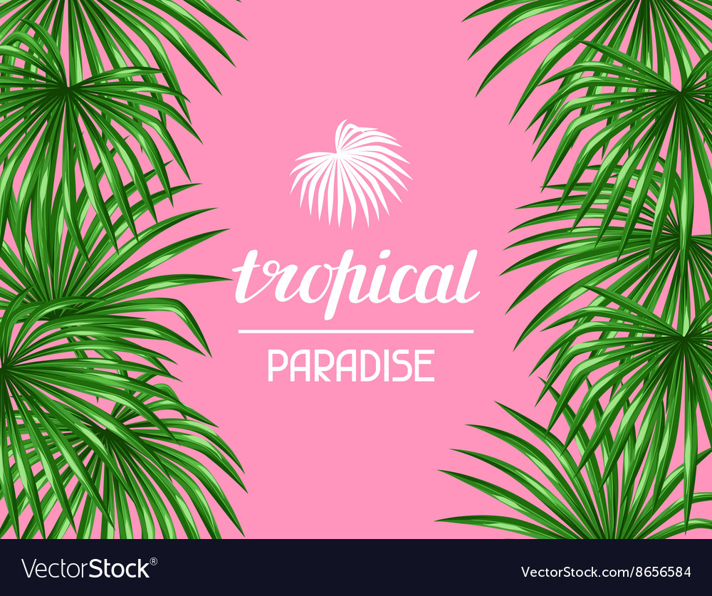 Paradise card with palms leaves Decorative image