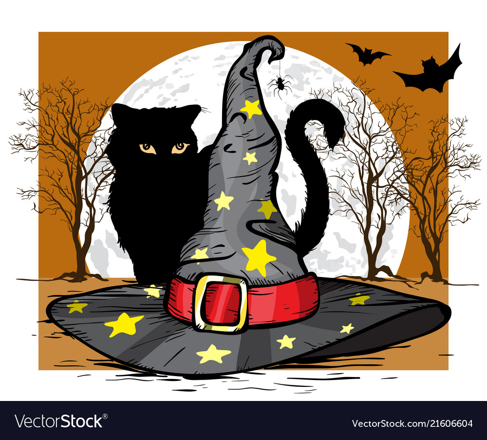 Cat and wizard hat halloween concept