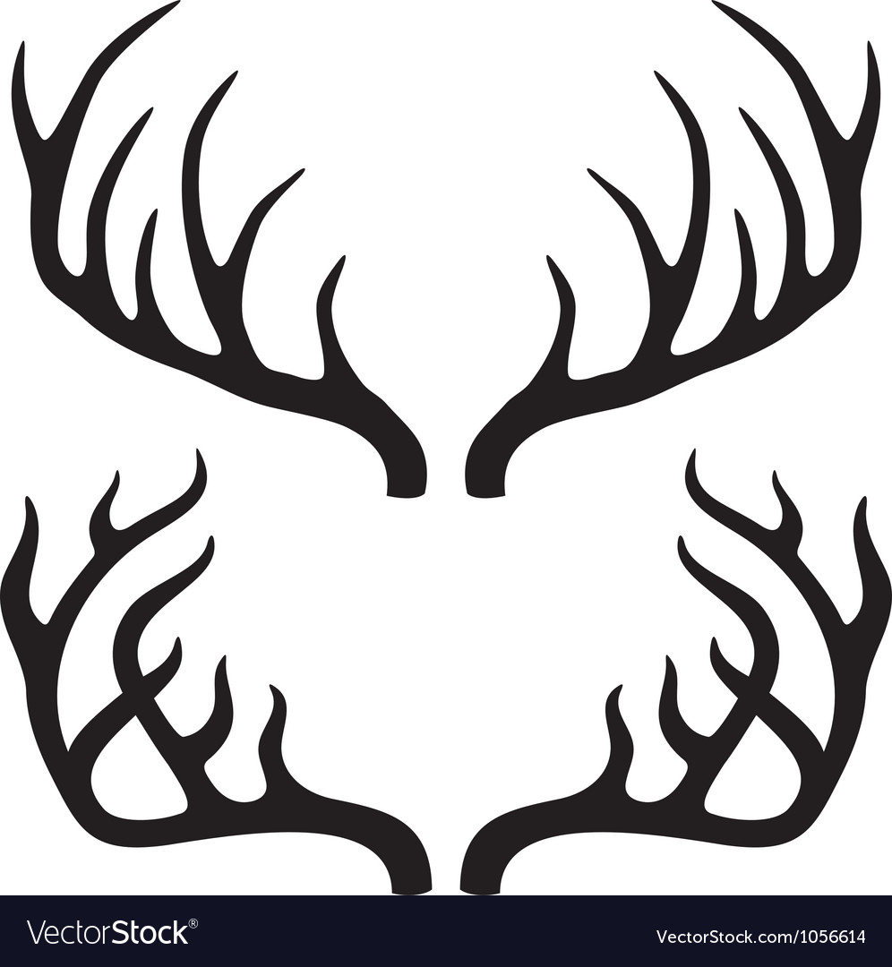 Deer horns vector image