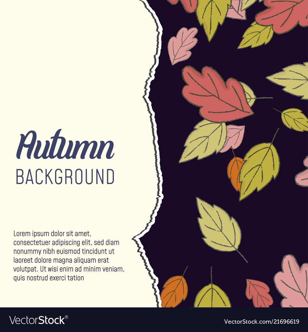 Autumn leaves abstract background