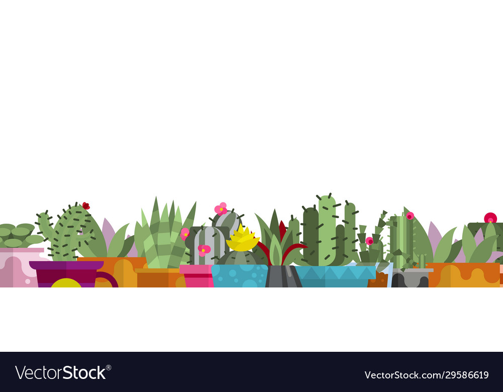 Cartoon cactus and succulents on white background