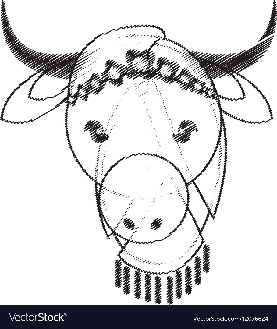 Head indian sacred cow culture vector image