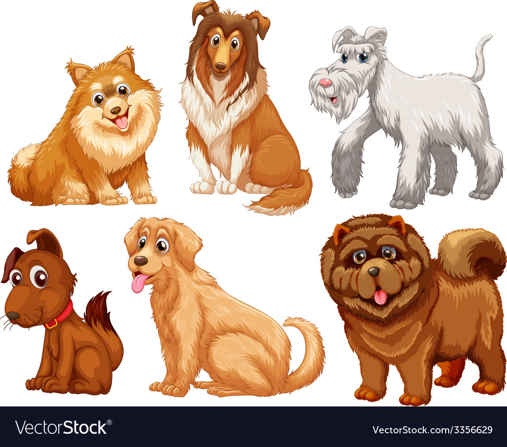 Different species of dogs