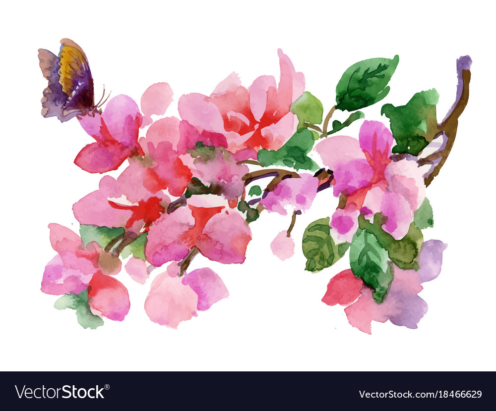 Flowers Watercolor Spring And Summer Royalty Free Vector