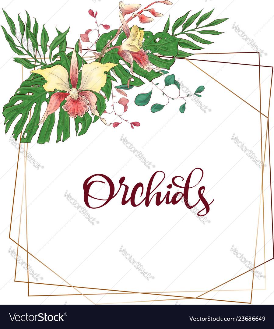 Floral design geometric frame orchid eucalyptus