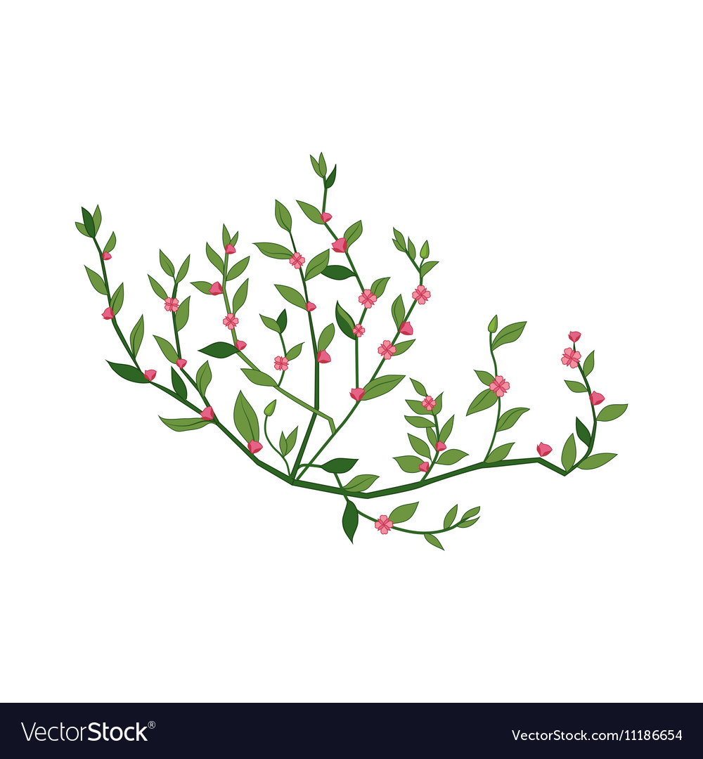 Tiny Pink Wild Flower Hand Drawn Detailed vector image