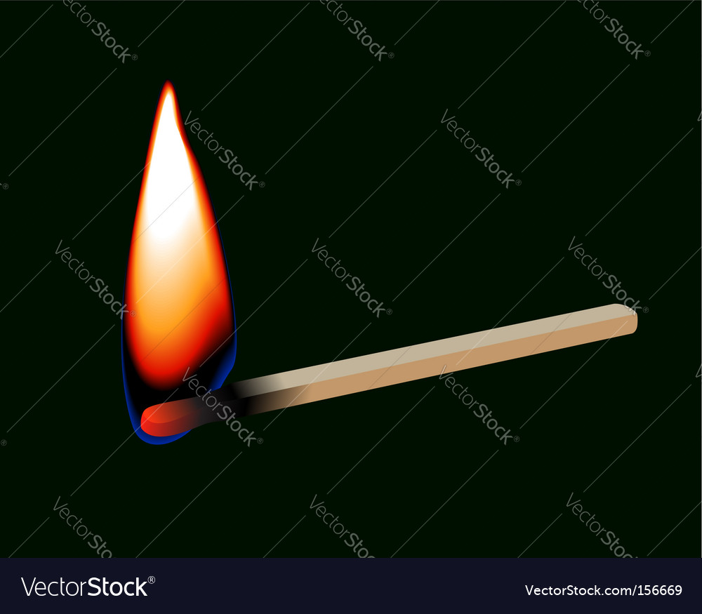Burning match stick vector image