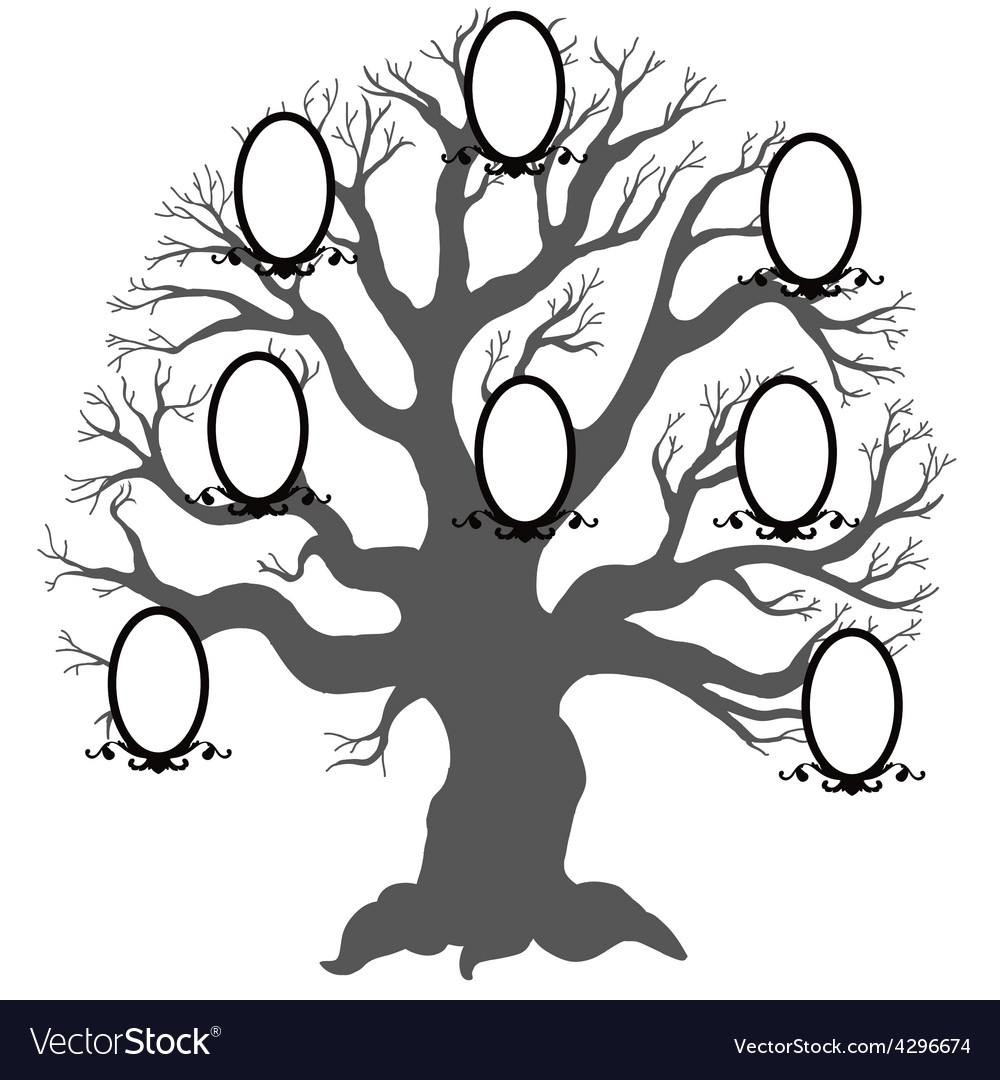 family tree royalty free vector image vectorstock rh vectorstock com family tree vector file family tree vector graphic