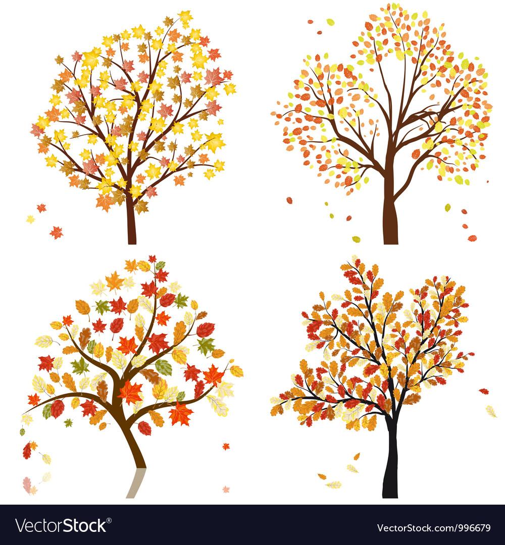Autumn tree set vector image