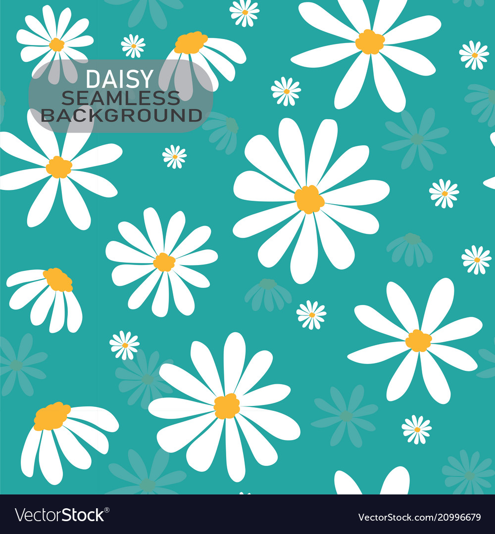 White Daisy Flower Pattern On Pastel Mint Green Vector Image
