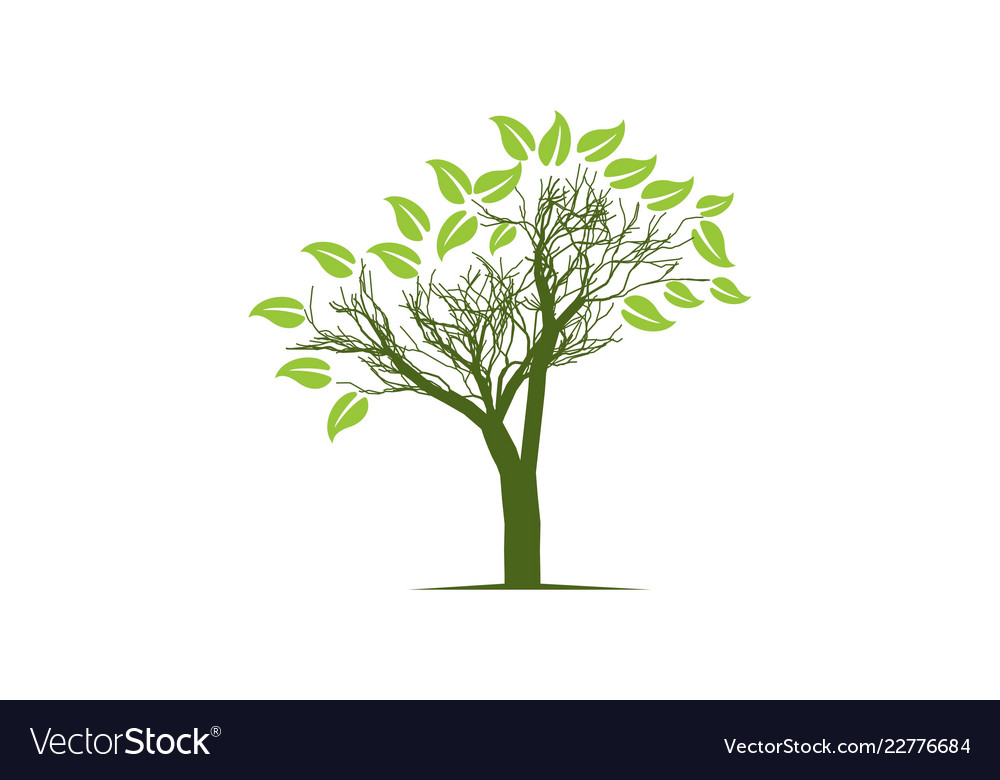 Abstract tree logo designs inspiration isolated