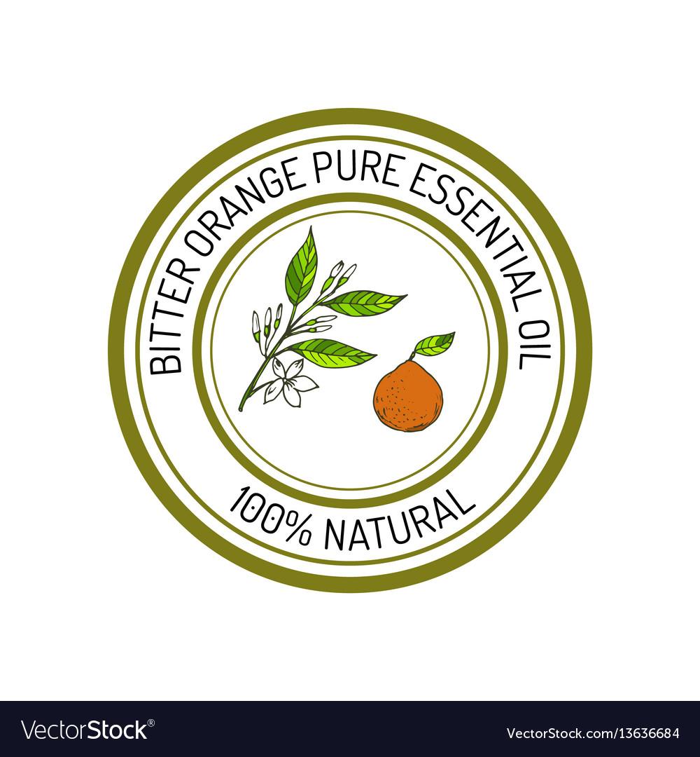 Bitter orange essential oil label aromatic plant vector image