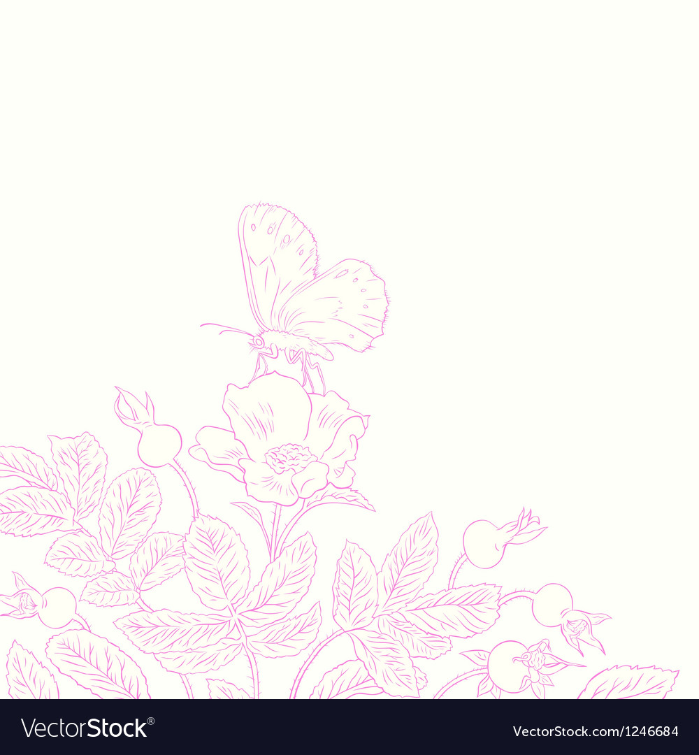 Rosehip and butterfly vector image