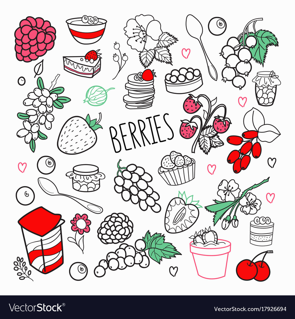Berries hand drawn doodle outline berry set