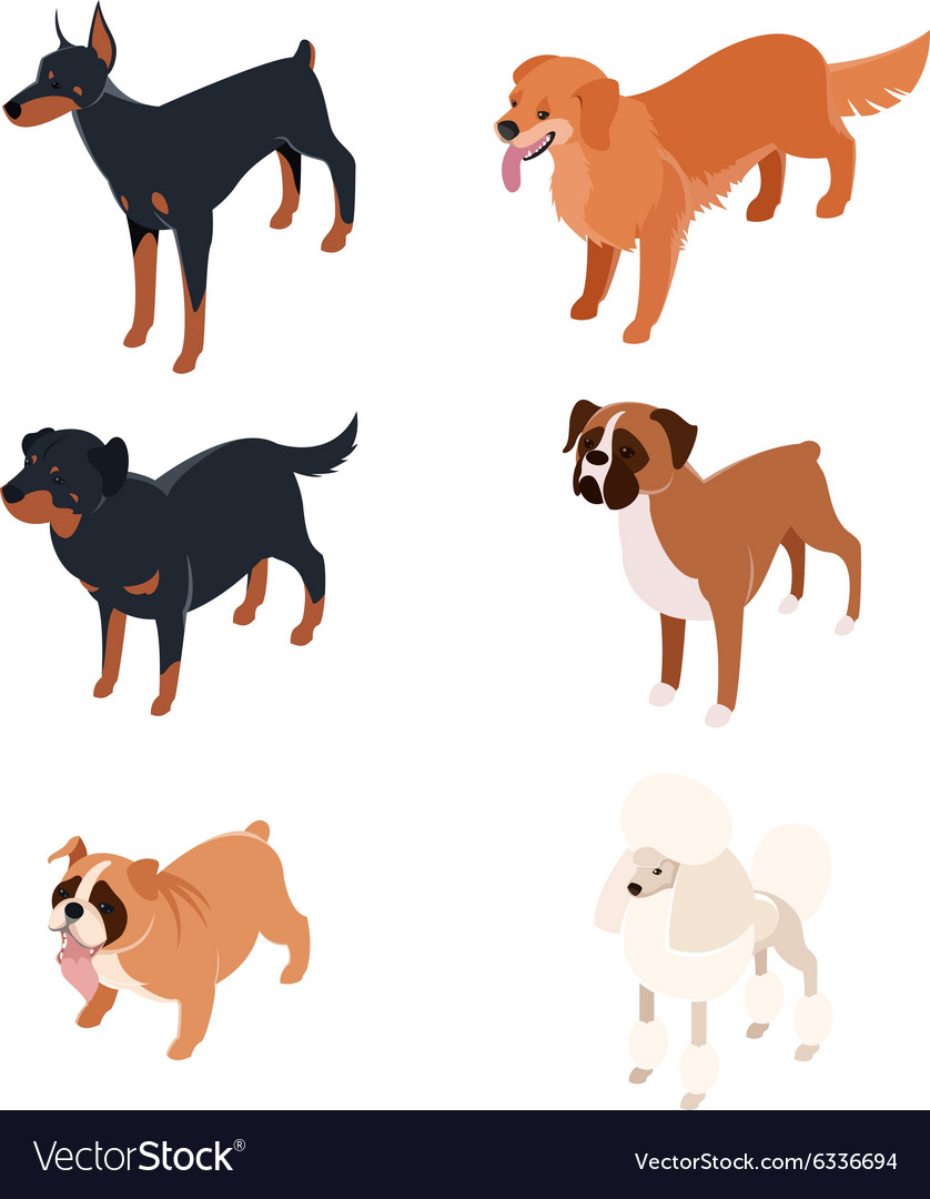 Collection isometric dogs1