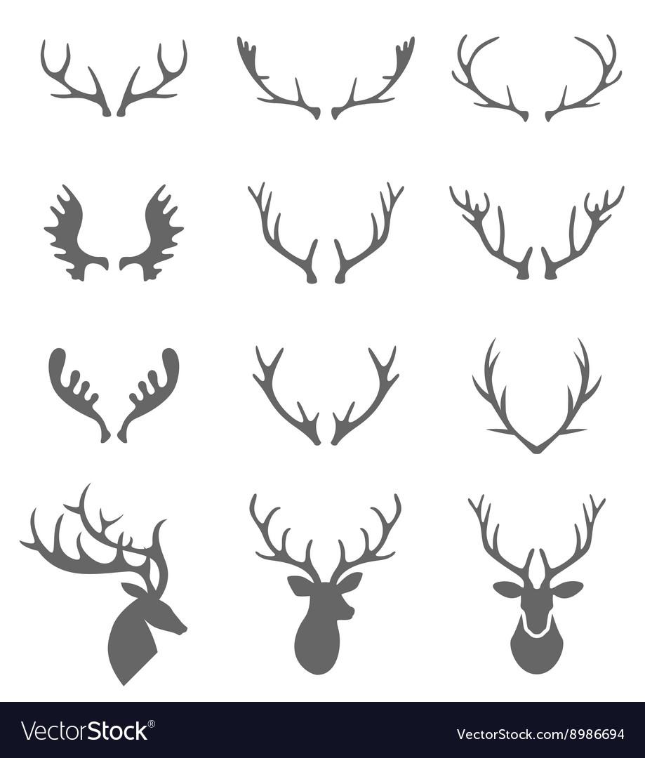 Hand Drawn Deer Antlers
