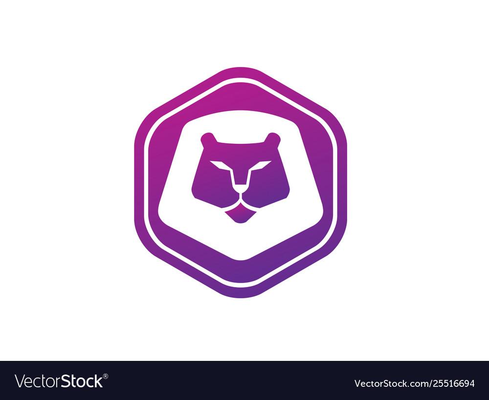 Orange lion head and face for logo design animal
