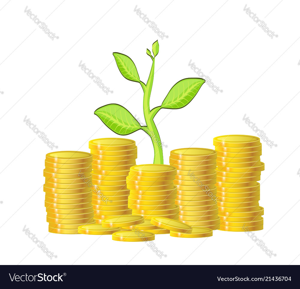 Green plant and gold money coins over white