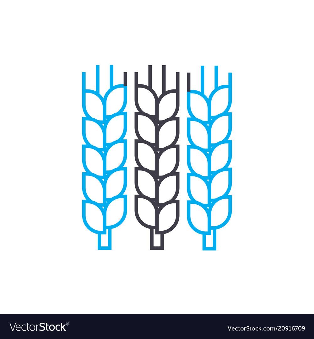 Grain growing linear icon concept grain growing
