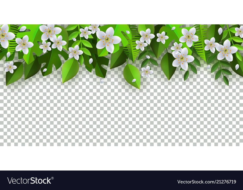 Green Leaves Flowers Frame Background Royalty Free Vector