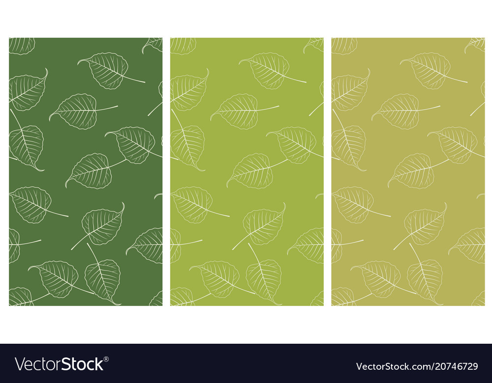 Seamless bo leaf backdrop set vector image