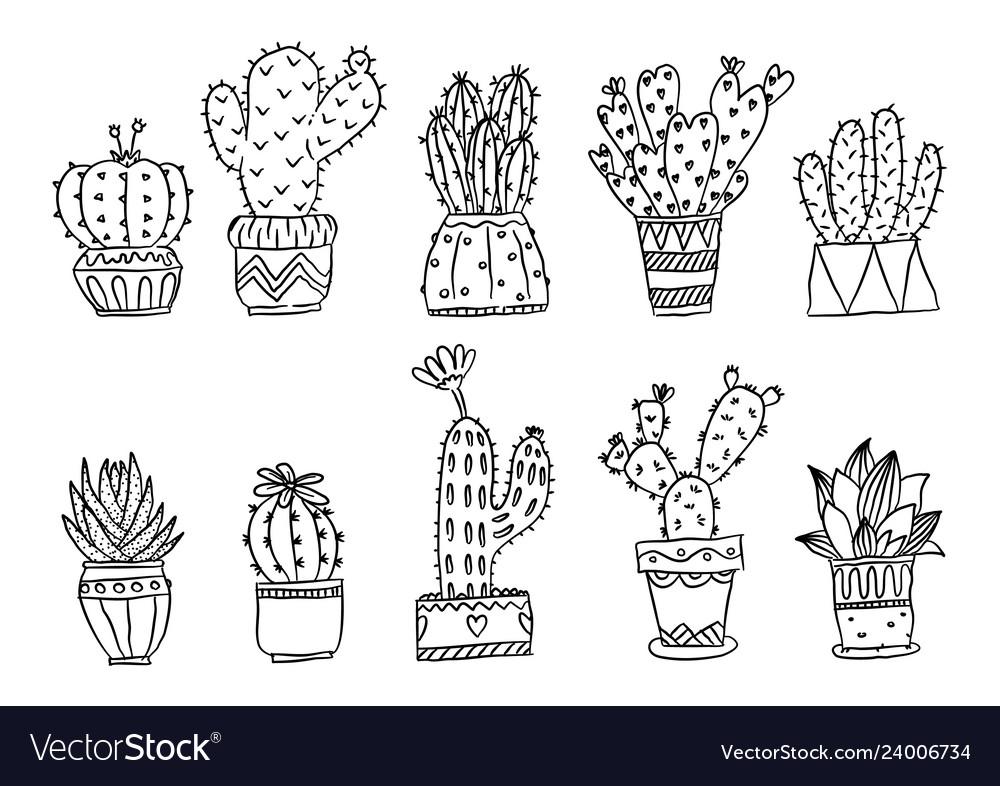 Set hand drawn cactus plants in pots