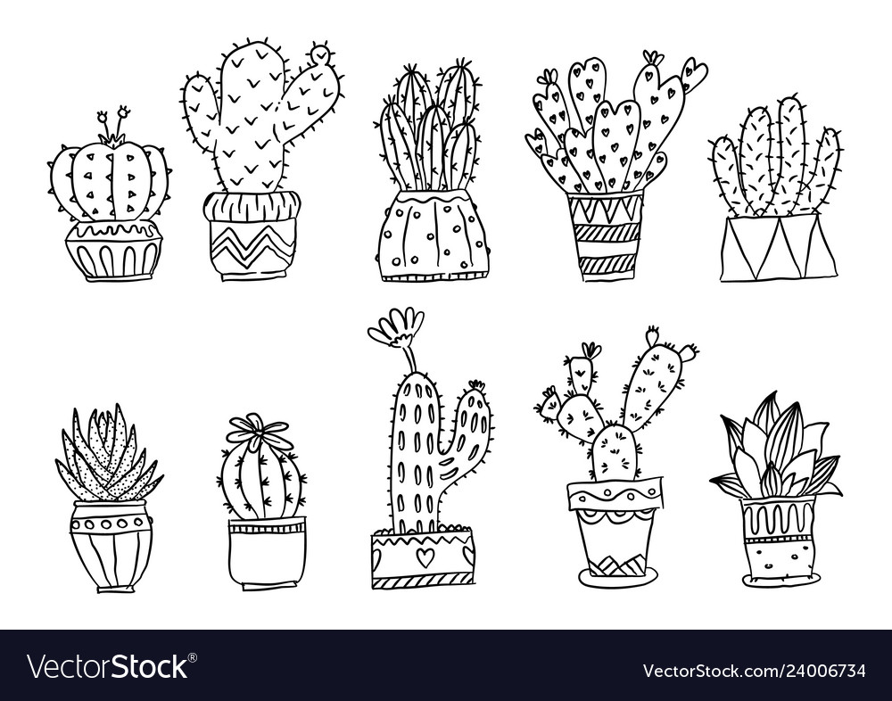 Set of hand drawn cactus plants in pots